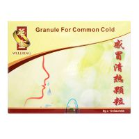 Wellring Granule For Common Cold - 6g x 10 Sachets